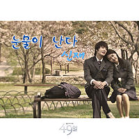 Shin Jae - Tears Are Falling [49 Days OST].mp3
