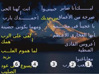 taranem5.ppt