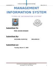 Types of Information System BBAe2006-03.docx